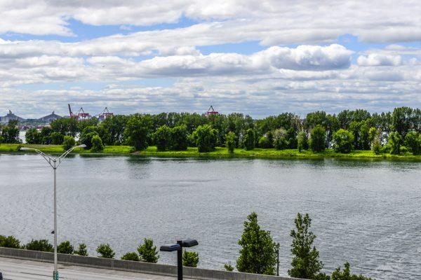 LeVIVO-terrasse-vue-Montreal-fleuve